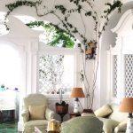 planta-trepadora-para-interior-1-150x150