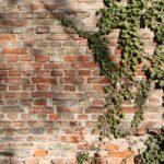 brick-wall-58056_960_720